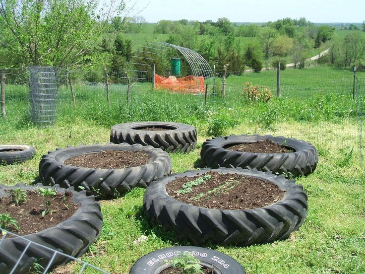 gardening tractor tires | One tire holds pepper plants and the tomato plants each get their own ...