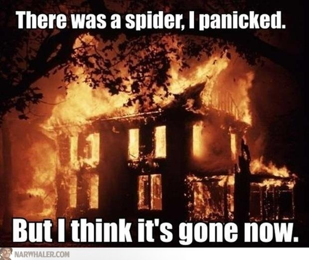 Burnt the house down because of a spider