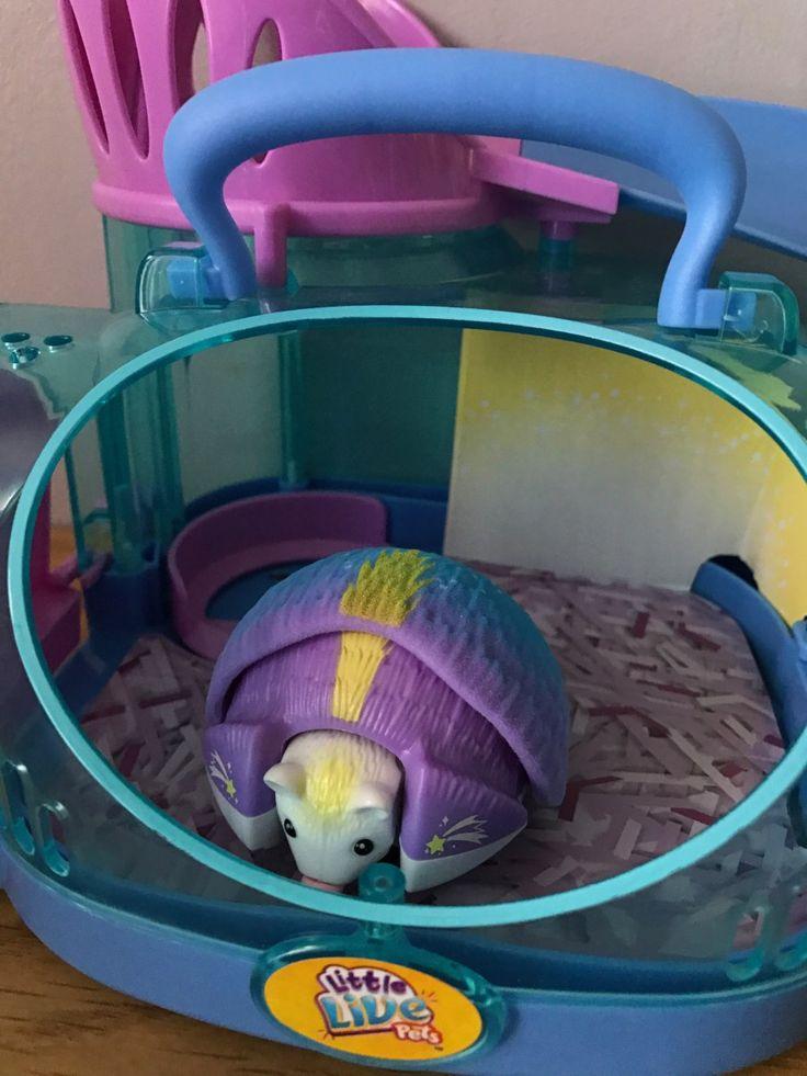 Little Live Pet Hedgehogs Review