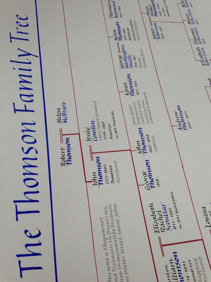 Part of a huge hand written family tree