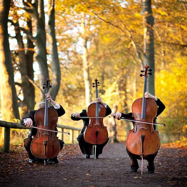 Aarhus Symphony Orchestra by Nikolaj Lund, via Flickr