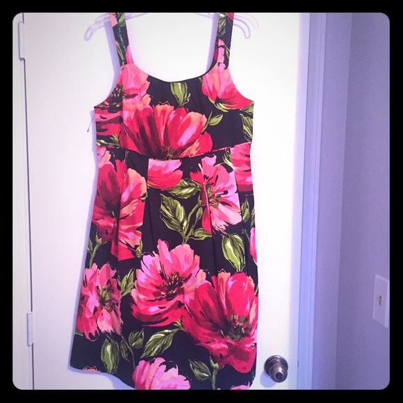 NWOT Lane Bryant Dress Gorgeous floral dress from Lane Bryant size 14. Hits just above the knee. Zips up the size. Lane Bryant Dresses