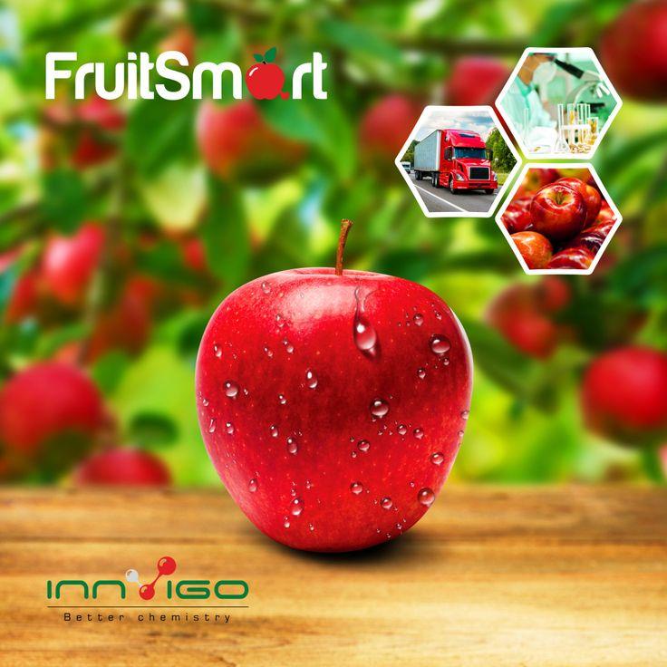FruitSmart hamuje wytwarzanie etylenu i procesów zachodzących w owocach pod wpływem etylenu wytwarzanego przez owoc, jak i pobranego przez owoc z otoczenia.  FruitSmart jest sformułowany w postaci rozpuszczalnego proszku, który zmieszany z wodą powoduje uwolnienie się lotnej substancji aktywnej (1-metylocyklopropen) i jej przedostanie się do tkanek owocu. Jabłka lepiej się przechowują: nie więdną, utrzymują jędrność i dzięki temu są bardziej atrakcyjne pod względem handlowym...