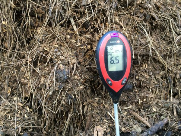 Pine Needles Compost Acidity Permaculture Compost Compost Soil