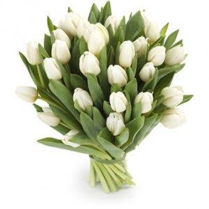 Witte tulpen, daar bestaat dit handgebonden boeket uit. Een klassieke en elegante verschijning, geschikt voor iedere gelegenheid!