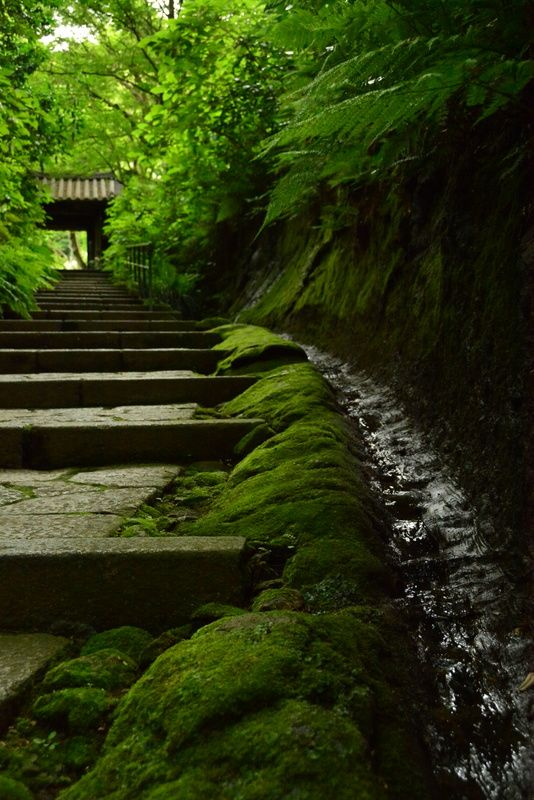 Zuisen-ji Temple, Kamakura, Japan
