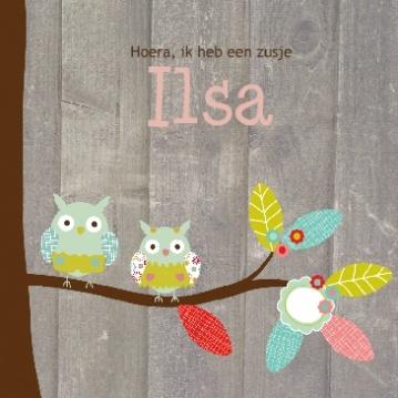 Geboortekaartje uiltjes in het bos  Brother and sister birth announcement card by Studio Elli & Zo  uil boomtak bloemen vogel vogelhuis hout, broertje zusje