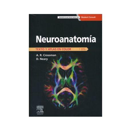 Crossman AR, Neary D. Neuroanatomía: texto y atlas en color. 5a ed. Barcelona [etc.]: Elsevier; 2015.  http://tienda.elsevier.es/neuroanatomia-texto-y-atlas-en-color-studentconsult-pb-9788445826157.html