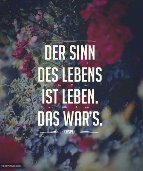 'Der Sinn des Lebens ist Leben. Das war's.' - lyrics from 'Das Grizzly Lied' by Casper #benjamingriffey