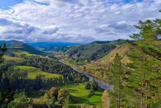 Descubrimos Nueva Zelanda gracias a Diario del Viajero: Whanganui River Road