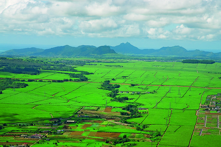 The luxuriant scenery of a #sugar island - #Mauritius
