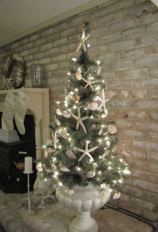 Seashell Christmas Tree In An Urn - the petite scale is perfect for our beach condo! Beachy holiday....
