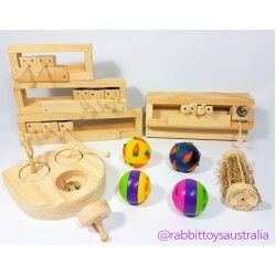 Puzzel & Logic Toys For Rabbits - Enrichment