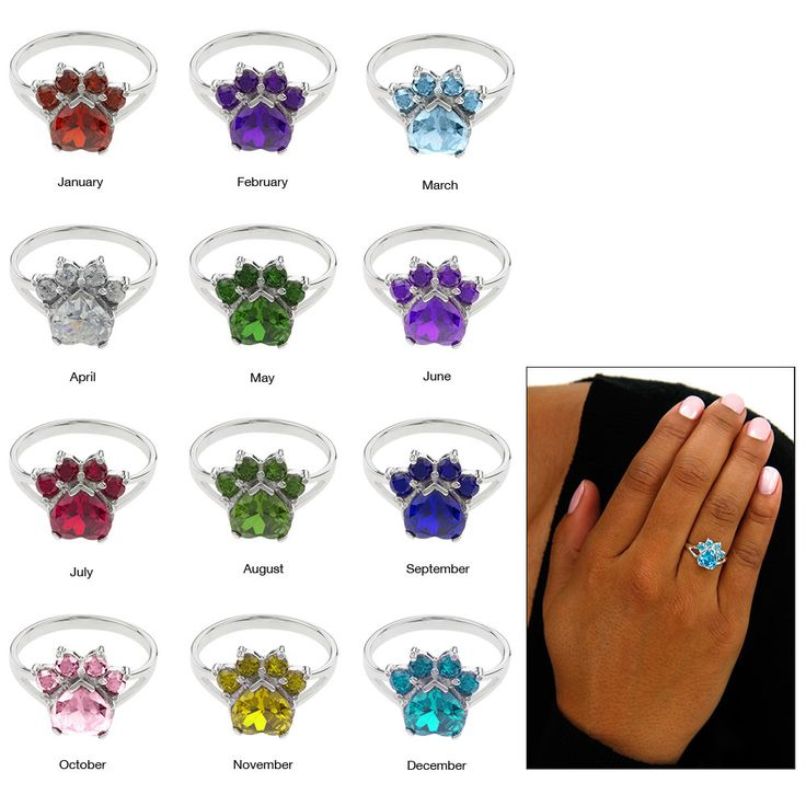 Paw Print Birthstone Sterling Ring at The Animal Rescue Site