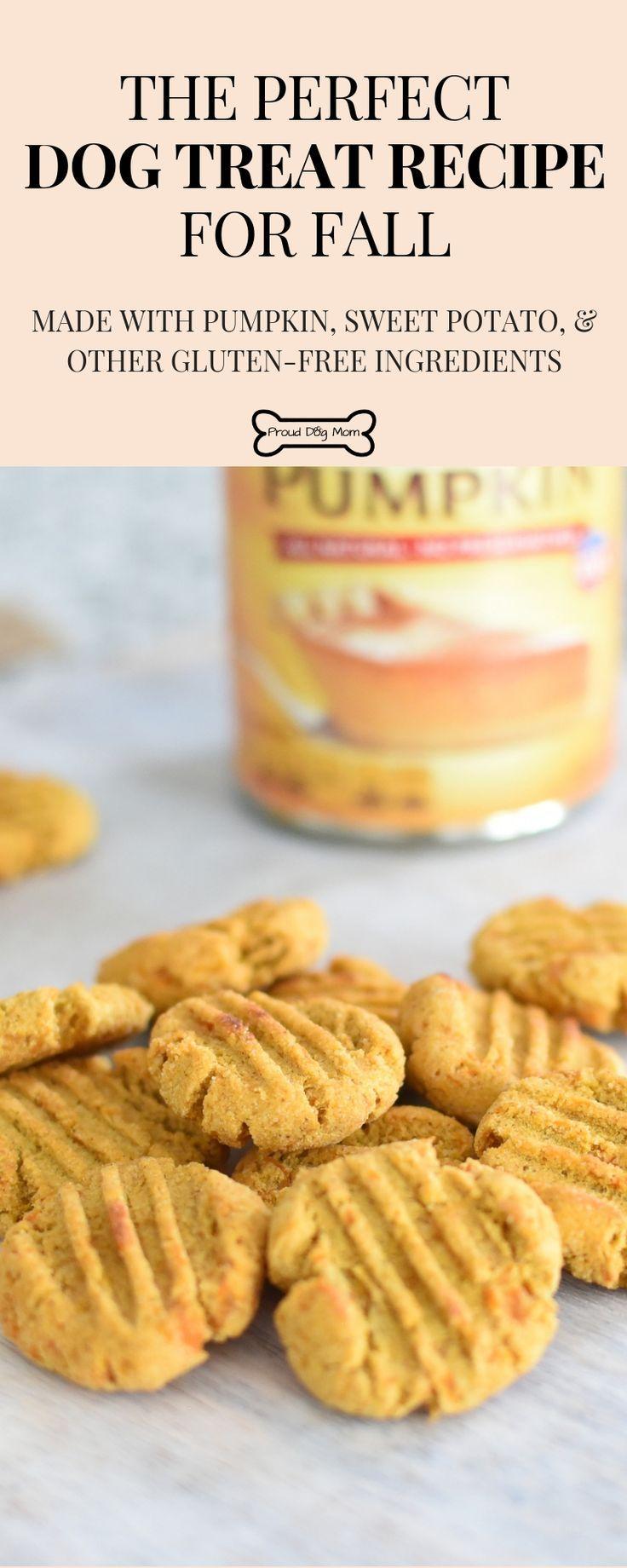 Pumpkin Sweet Potato Bites Recipe Dog Biscuit Recipes Sweet