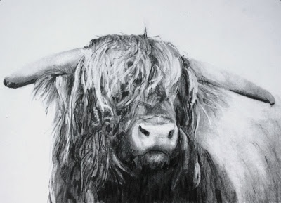(SOLD) #49 Highland Cow