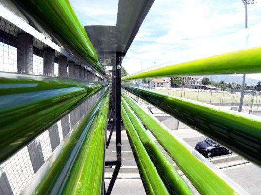 Cloud Collective's Overpass Algae Garden Heralds the Future of Urban Farming | Freeway Algae Garden Turns CO2 Emissions into Energy in Switzerland