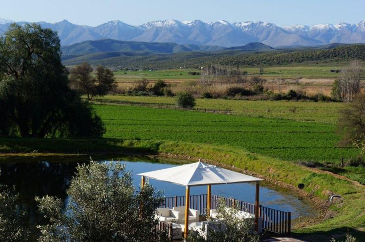 Surval Boutique Olive Estate - Oudtshoorn, South Africa