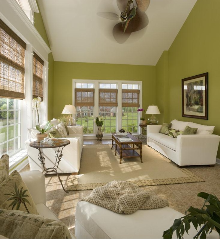 living room ideas green walls living room with green walls home 19098