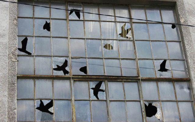 Terkedilmiş Binanın Muhteşem Bir Sanata Ev Sahipliği Yaptığı Proje