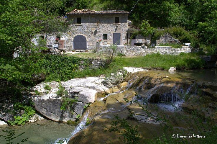 Tesori nascosti del nostro Abruzzo, assolutamente da scoprire! Il mulino ad acqua di Cervaro, frazione del borgo di Crognaleto (Te), è veramente incantevole. Condividete? Foto @Domenico Vittorio