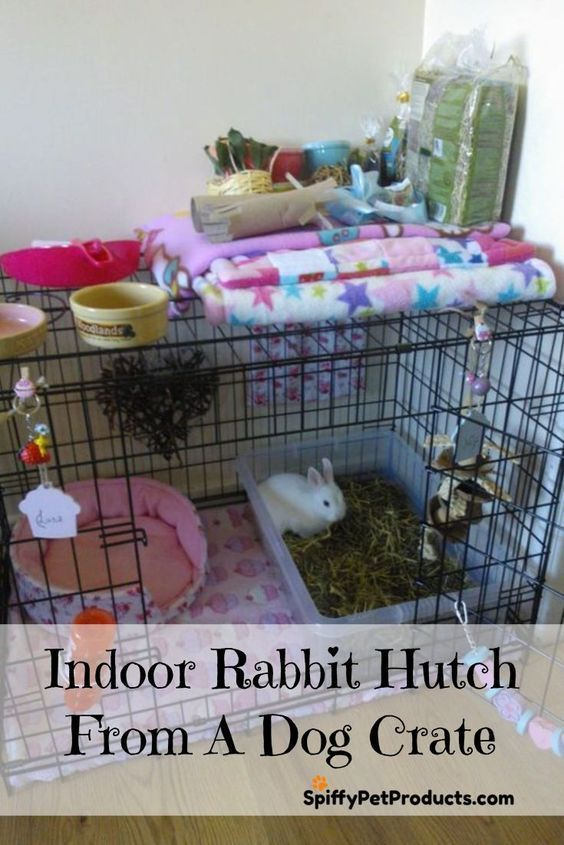 Massive Indoor Rabbit Hutch, DIY Rabbit Cage Concepts & Equipment
