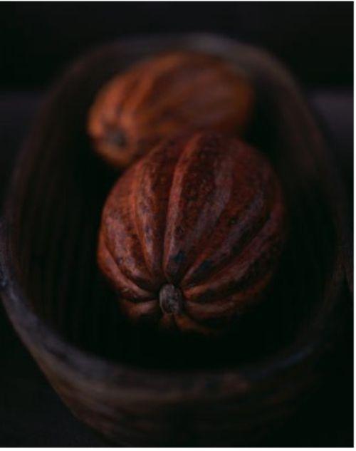 brown nutmeg