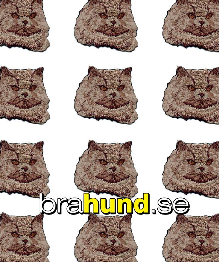 Brodyrmärke Katt, Perser, huvudbild. Värmes fast med strykjärn. Storlek ca 7 x 5 cm i kvalitetsbrodyr, mycket tätt broderad. Mycket fina märken. Blötlägg märket 2-3 minuter, ställ in strykjärnet på bomull. Placera märket där det skall.