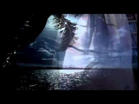 Всю ночь звучит мелодия дождя Тихонько барабанит в ритме вальса Окутала вуалью город мгла Свет окон манит мокрого скитальца Автор муз.Ярослав Никитин, аранж....