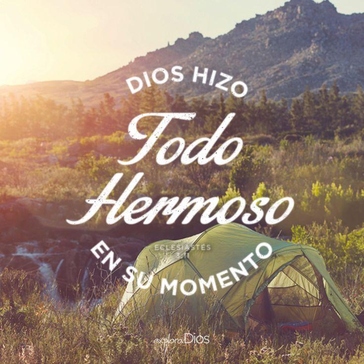 Dios hizo todo hermoso en su momento. - Eclesiastés 3:11