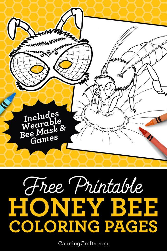 The Queen Bee Coloring Page So Cute Bee Coloring Pages Cute Coloring Pages Coloring Pages