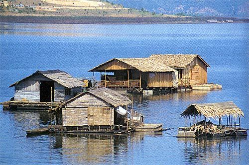 These houses are built on rafts so that the nomadic people who live in the Annam Mountains of central Viet Nam can move about freely from one side of the lake to the other. The houses are built from hardwood trees that grow slowly in the mountains. This hard wood takes a long time to rot, so it's perfect for building a house that sits in the water.