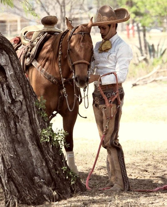 Vaqueros Mexicanos Tumblr Quotes Mas charros rodeo cowboys ...