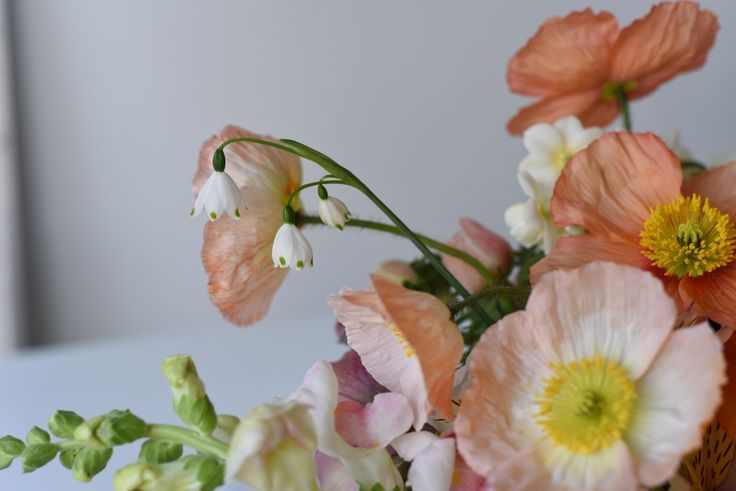 detail with poppies, snowdrop and snapdragon - apricot and soft pink centrepiece