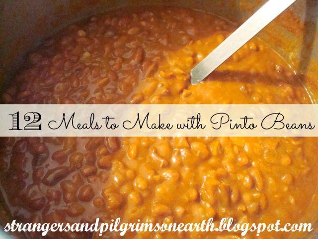 Twelve Meals to Make with Pinto Beans Recipes on Strangers & Pilgrims on Earth at http://strangersandpilgrimsonearth.blogspot.com/2012/02/batch-of-beans.html