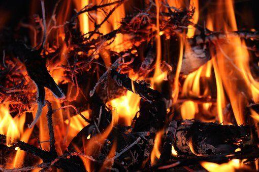 Flammes, Feu, Combustion, Bois