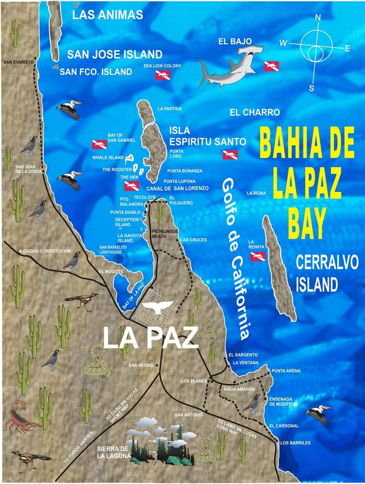 Best 25 La paz ideas on Pinterest  Bolivia la paz Bolivia and