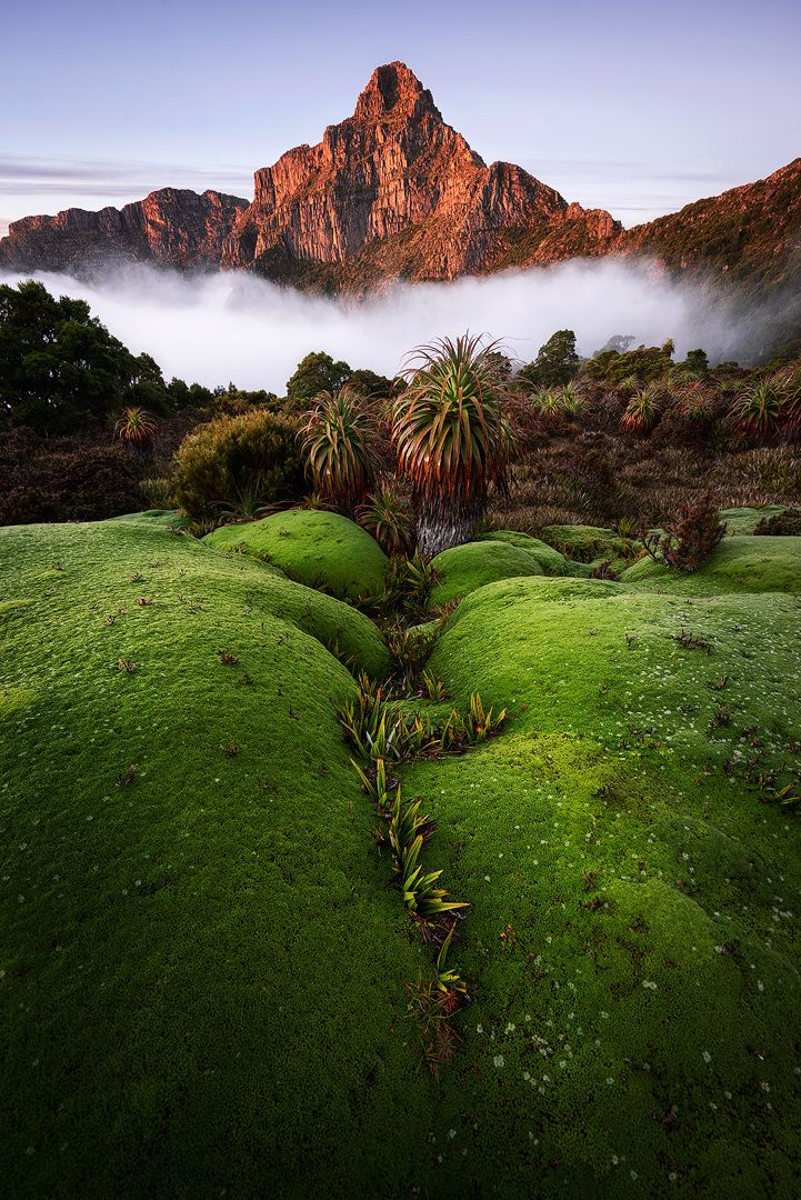 ~~Radiant Anne | Mt Anne illuminated by the sun's morning warmth, South-West National Park, Tasmania, Australia | by Chris Wiewiora~~