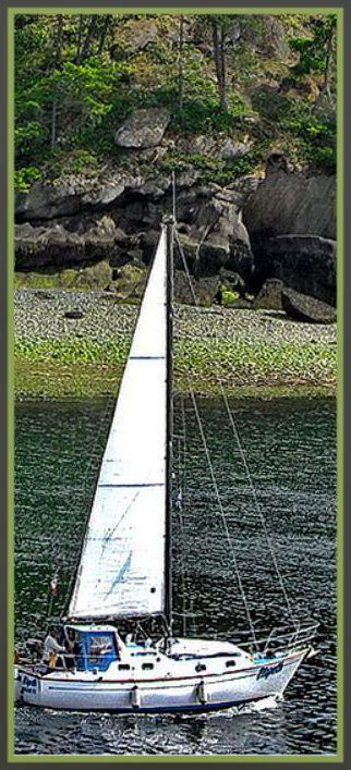 Sailboat in Nanaimo, BC on Newcastle Channel.    Photo by Robin Bodnaruk