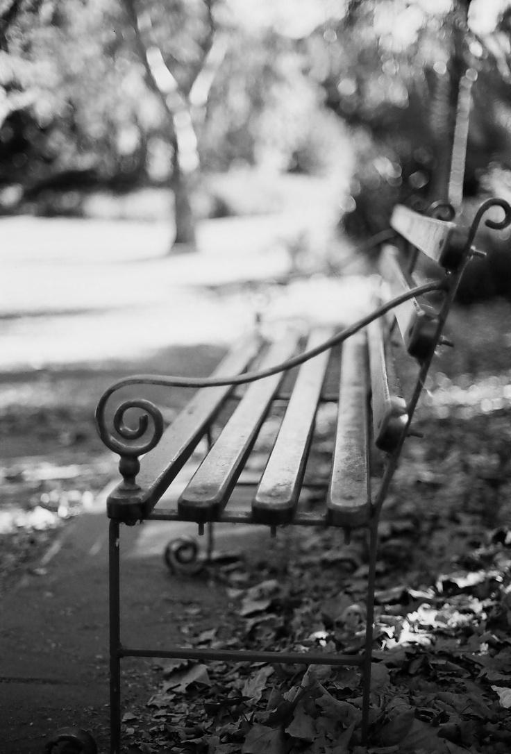 Adelaide Botanical Gardens (Nikon F3)