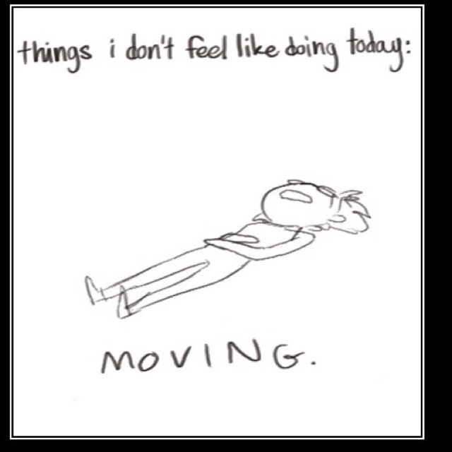My sentiments exactly.: Pretty Well, Funny Funny, My Life, Harness Harness, Funny Laughing, Today Pretty