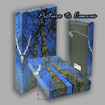 Picture To Canvas #picture #to #canvas from picture to canvas