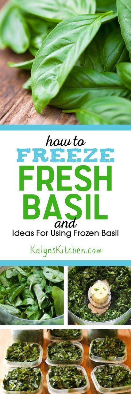 Here's my hugely popular post on How to Freeze Fresh Basil and Ideas for Using Frozen Basil. PIN IT NOW so you'll have this information next summer when you need it.  [found on KalynsKitchen.com]