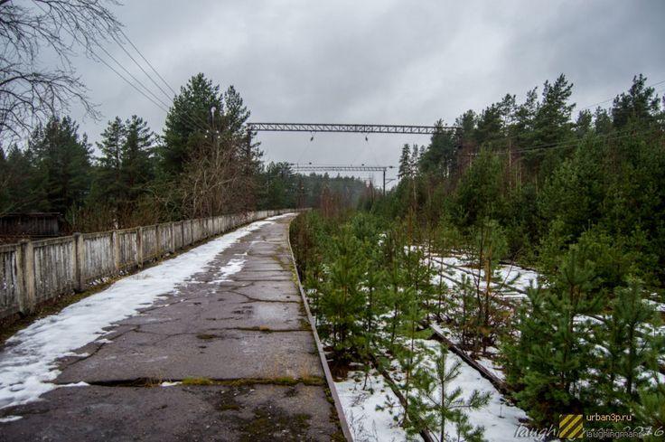 Фотографии объекта «Станция Краснофлотск» (28 шт.)