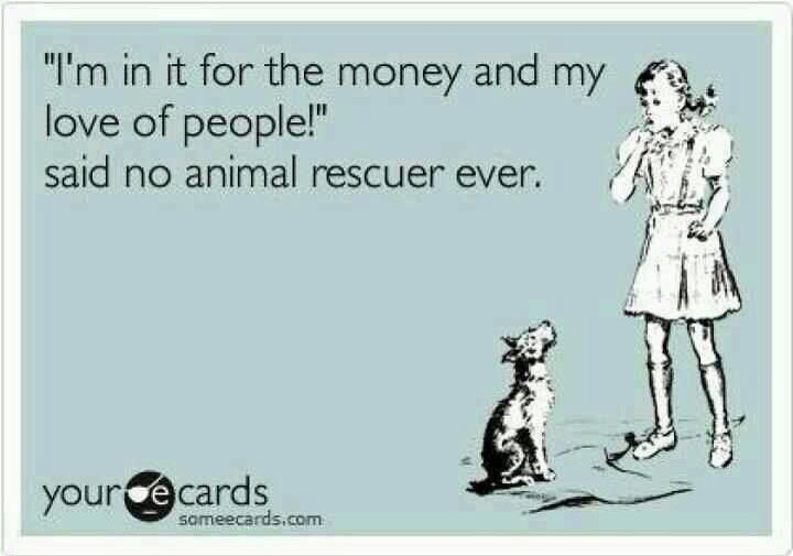 someecards | animal rescue #favorite