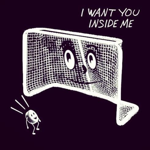 hockey lover
