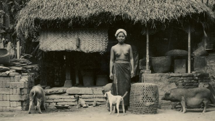 Balinese peasant's house | by Underground PFV Uitgeverij
