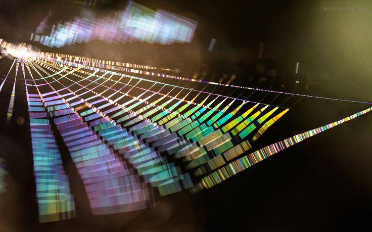 Rainbow Cobweb by AdMalamCrucem on DeviantArt