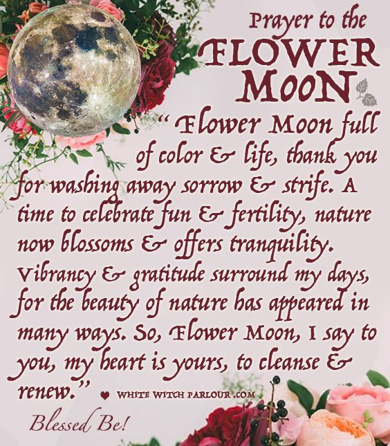 ☽✪☾...Full MOON, MAY, FLOWER MOON, spring, witch, metaphysical, wicca, spells, release, prayer, blessing, enchanted, spiritual, goddess, occult, magic, witchcraft. www.whitewitchparlour.com