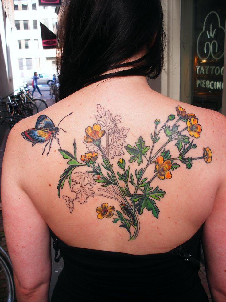 20 Botanical Tattoo Artists You Need To Follow For Your: 54 Best Botanical Illustration & Herbal Tattoo Board